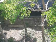 2階からの眺め 庭園